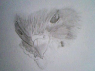 It's not really artwork, I just found a picture on the internet and drew it, but here wewe go :)