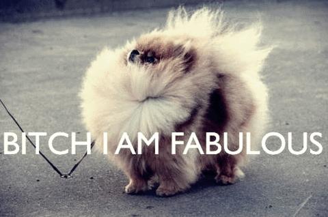 im fabulous!