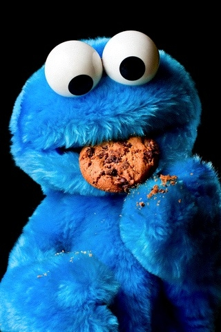 It was Not Me! It was The Cookie Monster!