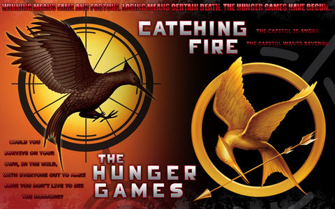 Catching Fire. Definitely. MY opinion is that 你 discover a lot 更多 characters in that one.