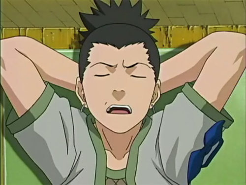 Shikamaru, I find everything too troublesome and I am always bored and lazy, unless I find something interesting, but actually I am good at stuff that need smart thinking.