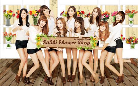 for me. 1.yuri 2.hyoyeon 3.sunny 4.taeyeon 5.sooyoung 6.jessica 7.yoona 8.seohyun 9.tiffany