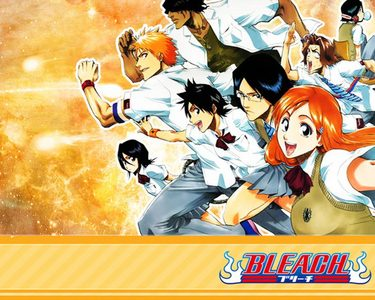 I think Bleach would be a pretty awesome anime to go into id luv to be a soul reaper <3