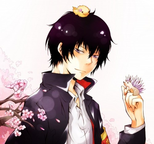 Only if it is to Hibari-San