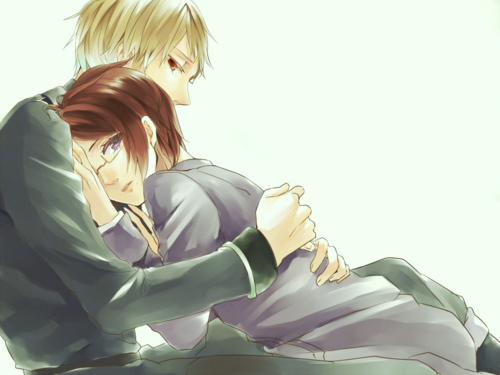 Prussia x Austria. Although hetalia pairings are very pupular so is the anime, very few people support this couple cause everyone likes Austria x Hungary atau other couples like UsUk more....It's my personal favorit couple though <3