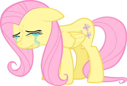 This makes Fluttershy sad.