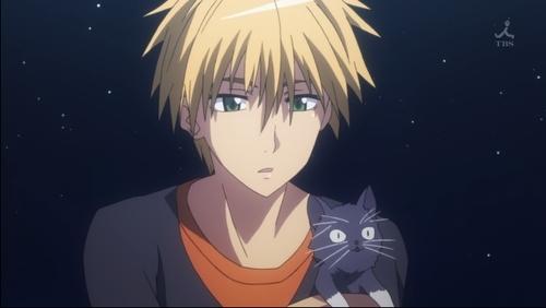 Usui's cat