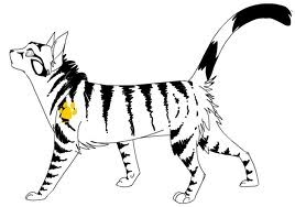 yes, Longtail from ThunderClan, even though he went blind....
