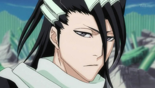 Byakuya with Kuchiki Clan Scarf. It's passed to 다음 leader of the clan and very expansive, u can buy lots of house's with it.