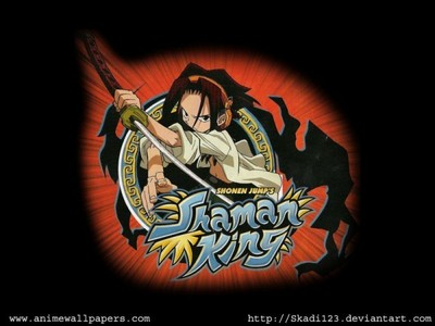 Shaman King. But at that time,i didn't know what 아니메 was at that time.~