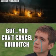 Take him to a Quidditch match!