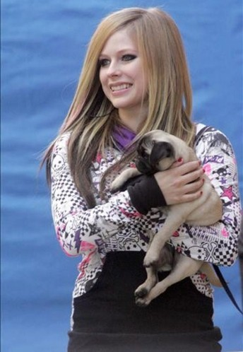 Photo of Avril Lavigne & her Dog
