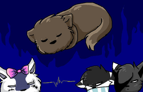 Russia neko sleeping =3
