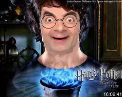 mr frijol, haba as harry potter