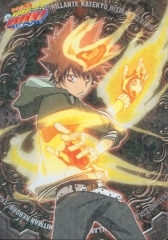Sawada Tsunayoshi from KHR! and he uses gloves........