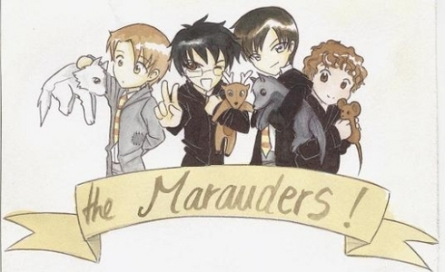 I am on the Marauder's side. Don't get me wrong I like fred figglehorn and George but they aren't the Marauders. Even if we know way mais about fred figglehorn and George my coração will always be to the Marauders.