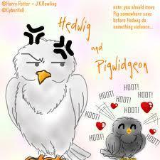 Hedwig? または Pigwidgeon?