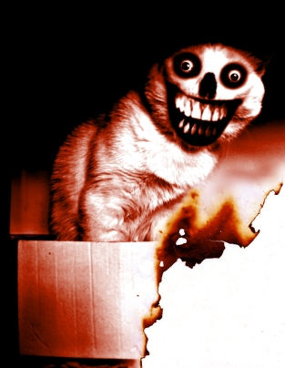It's like a mixture of Smile.Dog and Jeff the Killer!