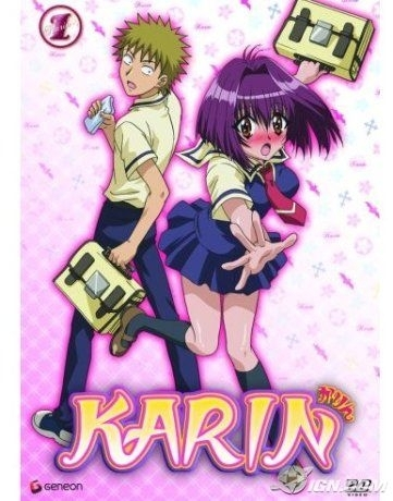 well i know that chibi vampie is the manga name also the japanese vergen of the عملی حکمت karin is the english vergen of the عملی حکمت