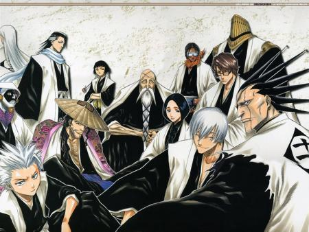 All the Captains from Bleach!