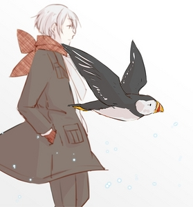 ♥♥Iceland♥♥ BECAUSE hes adorable, cute, hot, HAVE U HEARD HIM SAY ONII-CHAN?! xD hes mine 0.e touch him and DIE