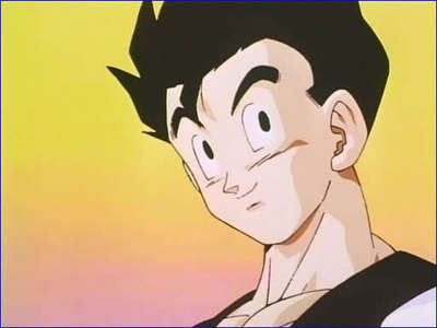 I would choose Adult Gohan from DBZ Because i'm Videl ^^ he's so sweet and naiv^^