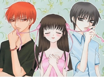 Fruits Basket is definitely the best 망가 I read! It was so detailed and really made me emotional when I saw many of the characters stories and the background on that character what they went through there was just so much (especially with Akito-san with her past) that solidified it.