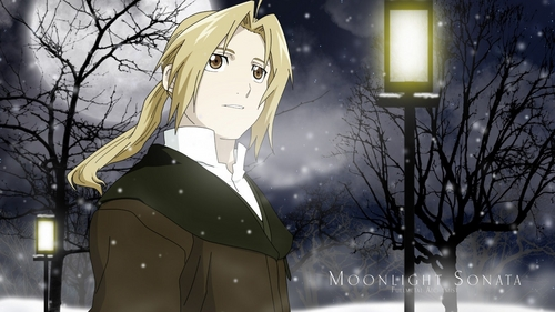 what type of pic do 당신 want? this is a wallpaper, if 당신 don't like it just tell me 'coz i have so many pix and i'll change it for 당신 ^_^ btw, 당신 can check my activity to find lots of FMA pix in my 질문 :)