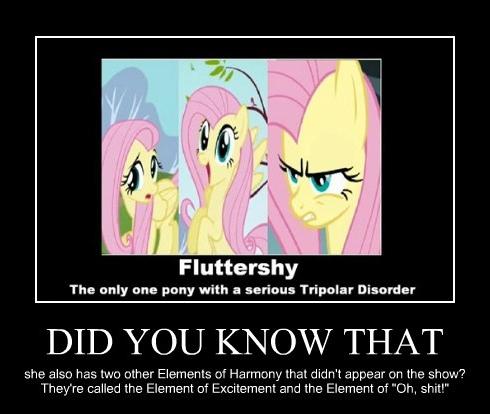 XDD A Fluttershy meme.