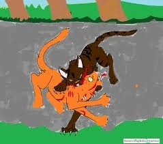 *is murdering firestar* ah done. :3 *looks at you* wait, what?