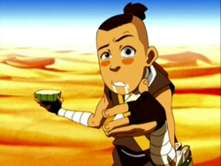 i hope i love sokka so much
