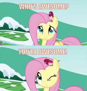 Because Fluttershy thinks so.