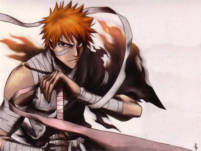 Ichigo Kurosaki from Bleach. He's really kind and he's really strong, plus he's really cute with his spiky orange hair and that HUGE sword he carries around everywhere, he's my obvious chose.