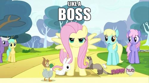 Because I'm a boss. B)