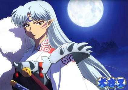 well i 爱情 sesshomaru's hair