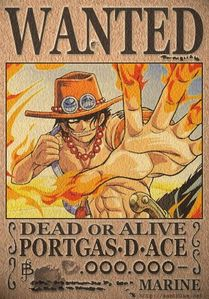 PORGUS.D .ACE / ONE PIECE i don't know if it further the story ...but i just want ace back..he was my fave character