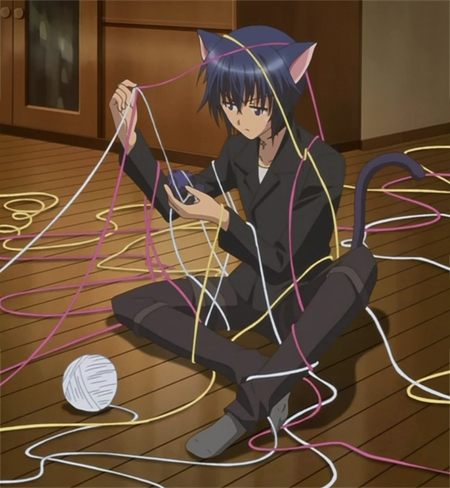 Ikuto! Usui is hot but...come on! Ikuto is cute AND hot! XD