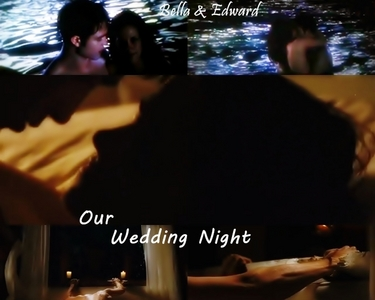 Well I love the whole movie,but my 2 fave scenes are : 1)The honeymoon,in particular the wedding night(see pic below) 2)The wedding