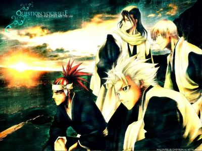 My all time preferito is Bleach :) but there lots of other animes that i like too like... Angel Beats Wolf's Rain Gakuen Alice Soul Eater Fullmetal Alchemist Baka and Test Shugo Chara Hetalia Axis Powers - Incapacitalia <3 Special A. and più :) (the picture is from Bleach)