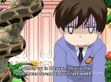 Fujioka Haruhi-chan from Ouran Highschool Host Club She has short brown hair!:3