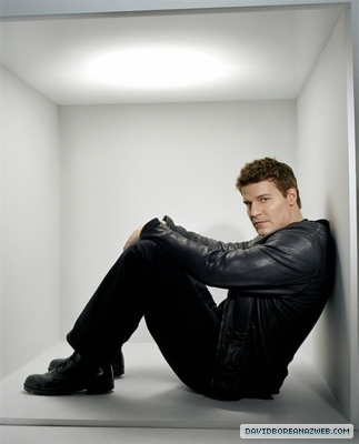 what kind of girls will look beautiful next to David boreanaz ?