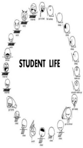 salut students this cercle of life is like our life?