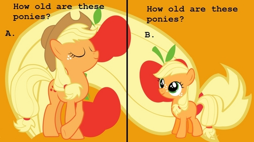 How old are the small ponies and how old are the big ponies?