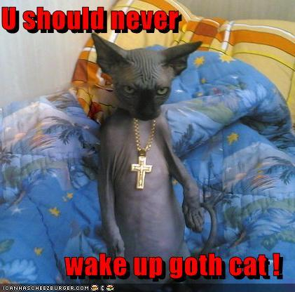 Do You Get Angry If Someone Suddenly Wakes You Up In Sleep ?