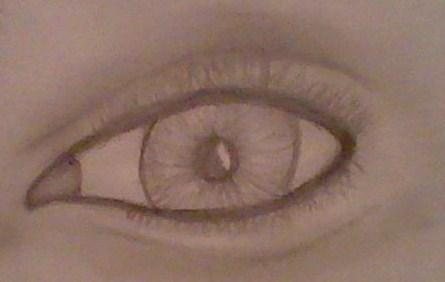 Do bạn like my drawing?