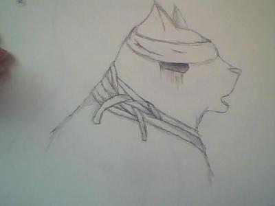 Did I do good drawing this?