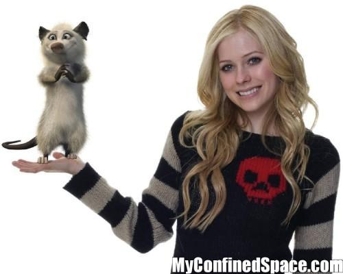post a picture of avril with a pet
