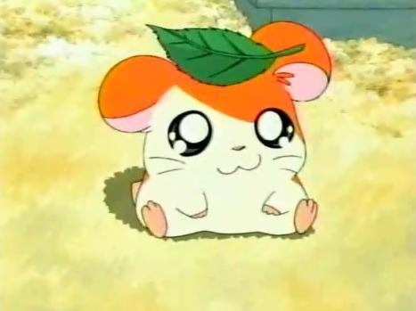 Amazing Male Anime Adorable Dog - 389798_1337318259581_467_349  Gallery_383466  .jpg