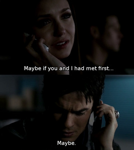 Some Stelena fans say that Elena told Damon that maybe if they had met first, she would choose him, to soften the blow of rejection. Do you think this is true or do you think that Elena actually meant what she said?