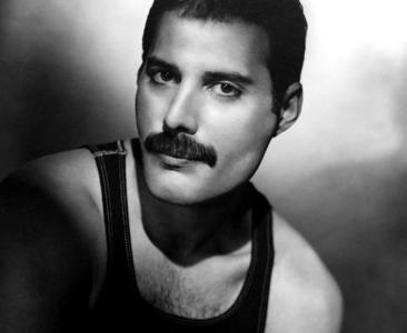 What are the things Ты have in common with Freddie??